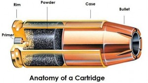 cartridgeanatomy